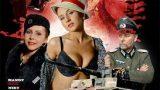 Piç Grubu 3 (2011) DVD